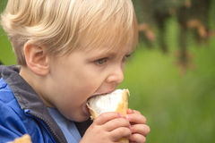 Blond boy eating ice cream Royalty Free Stock Photos
