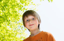 Blond boy enjoying sunny day in a park. Horizontal backlit portrait of blond boy in a sunny day Stock Photography