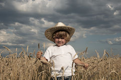 Blond boy in a field Royalty Free Stock Photography