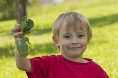 Blond boy and a green apple. Portrait of a blond boy with a  green apple in his hand and grass in the background Royalty Free Stock Photos