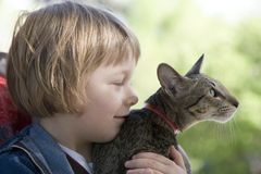 Blond boy with oriental bred cat Royalty Free Stock Photos