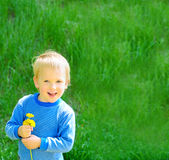 Blond boy on spring green grass background Stock Photos