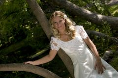 Blond bride in countryside Stock Photo