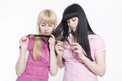 Blond and brunette Stock Images