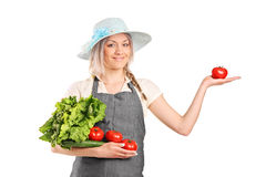 Blond farmer holding a various vegetables Stock Images