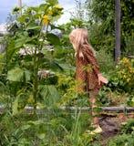Blond flicka i trädgården! arkivbild