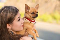 Blond flicka och röd chihuahuahund royaltyfria bilder