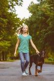 Blond flicka som går med hunden eller dobermanen in Royaltyfria Bilder