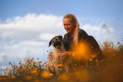 Blond flicka som spelar med den spanska mastiffen f?r valp i ett f?lt av gula blommor royaltyfria bilder