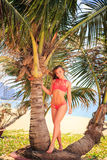 Blond girl in bikini stands on palm trunk lifts hand smiles Royalty Free Stock Image
