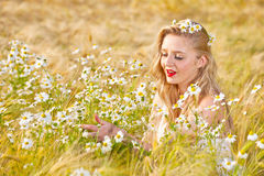 Blond girl on the camomile field Stock Photography