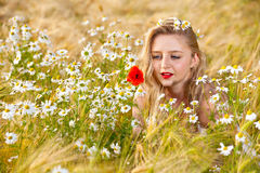 Blond girl on the camomile field Royalty Free Stock Photography
