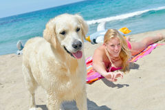 Blond girl with dog on the beach Stock Photo
