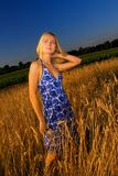 Blond girl in the field Royalty Free Stock Photos