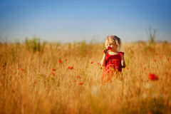 Blond girl in the field Stock Photos