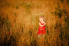 Blond girl in the field Royalty Free Stock Image