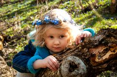 A blond girl in a forest. Белокурая девочка в лесу. A curly-haired blond little girl in a royalty free stock photography