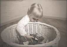 Blond Girl Holding Sphynx Kittens in a Basket Royalty Free Stock Image