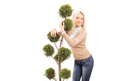 Blond girl hugging a plant Royalty Free Stock Images