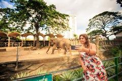 Blond Girl Makes Selfie against Elephant in City Zoo. Blond girl in flowery frock makes selfie against elephant in resort city zoo Stock Photos