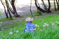 Blond girl rear view Royalty Free Stock Images