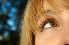 Blond girl's eye closeup Stock Photo