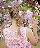 Blond girl with stylish plait Stock Image