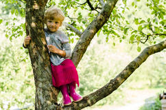 Blond girl on tree Royalty Free Stock Image