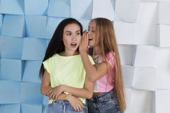 Blond girl whispering something interesting in brunette's ear. Girls wearing jeans shorts and bright colored t-shirts royalty free stock images