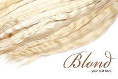 Blond haar royalty-vrije illustratie