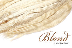 Blond hair. Close up on a white background Stock Photos
