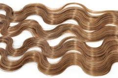 Blond Hair Stock Photos