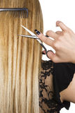 Blond hair. And hairdresser's tools Royalty Free Stock Image