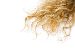 Blond hair Stock Images