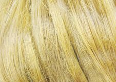 Blond hair as background Stock Image