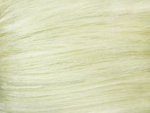 Blond hair as texture background Royalty Free Stock Photo
