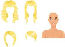 Blond hair assortment. Assortment of blond hairstyles and European girl Stock Photos