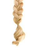 Blond hair braided in pigtail. Over the white Royalty Free Stock Images