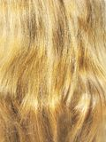 Blond hair closeup Stock Photos
