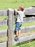 Blond hair kid on a wooden fence looks ahead.  Royalty Free Stock Photography