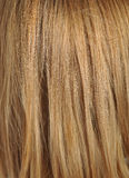 Blond hair, macro shot Stock Photo