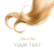 Blond Hair Texture. Over White royalty free stock photography