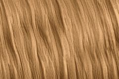 Blond hair texture, long shiny wavy hair royalty free illustration