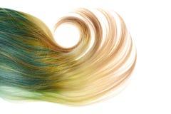 Blond i błękitna umbra peruka z dużym kędziorem odizolowywającym Obraz Stock
