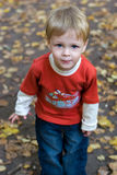 Blond kid. In autumn park looking at camera Stock Photos