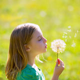 Blond kid girl blowing dandelion flower in green meadow. Outdoor profile view royalty free stock photography