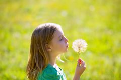 Blond kid girl blowing dandelion flower in green meadow. Outdoor profile view stock images