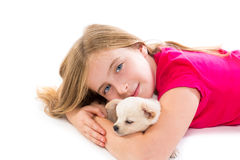 Blond kid girl with puppy chihuahua pet dog Stock Images
