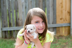 Blond kid girl with puppy pet chihuahua playing Stock Images