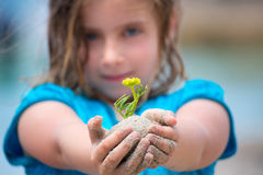 Blond kid girl showing a beach plant with sand in hands. Blond kid girl showing a beach plant with sand in her hands selective focus Royalty Free Stock Images